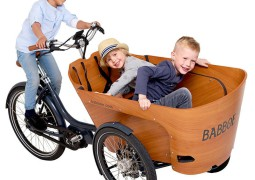 babboe-carve-mountain-bakfiets_1_1_1